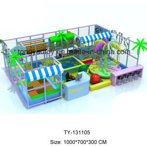 Exciting and Interesting Big Commercial Jungle Indoor Playground pictures & photos