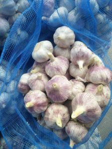 2017 Jinxiang Normal Garlic with The Best Quality pictures & photos