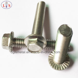 Stainless Steel 304 Hexagon Head Flange Bolt with High Strength pictures & photos