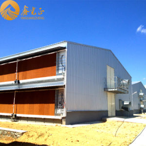 Two Storeys Prefabricated Steel Chicken House (PCH-14) pictures & photos