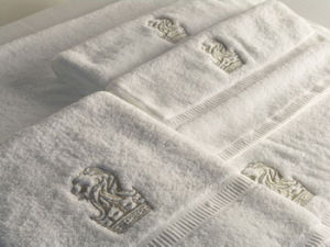 Hotel Logo Embroidery Cotton Terry Hand Towel pictures & photos