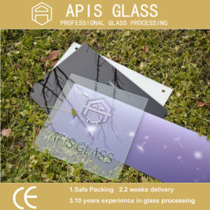 3-12mm Silk-Screen Printing Glass / Decorative/Colored Glass/ Ceramic Fritted Painting Toughened Glass pictures & photos