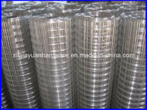 Plain Weave Welded Wire Mesh in Galvanized and Electro Galvanized pictures & photos