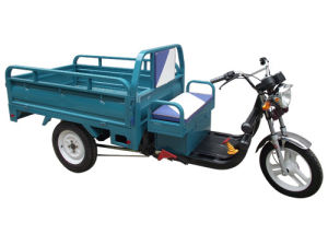 Cecertified Electric Trike Electric Cargo Tricycle pictures & photos