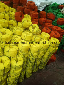Polyethylene Twisted Rope 3 or 4 Strands pictures & photos
