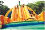 Inflatable Slide (QQ12213-5) pictures & photos