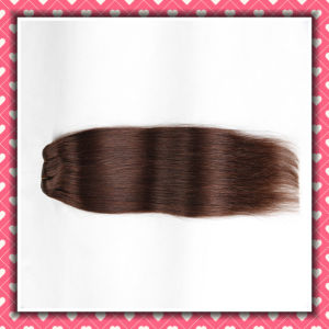 Brown Color Brazilian Hair Clip-on Hair Extensions Silky 24inches pictures & photos