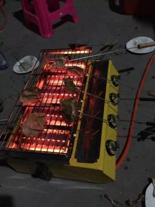 Infrared BBQ Grill with Burner Plate pictures & photos