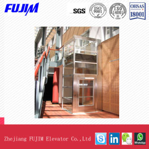 400kg Capacity 0.4m/S a Mulfunctional and Exquistie Home Ineal Elevator Villa Elevator pictures & photos