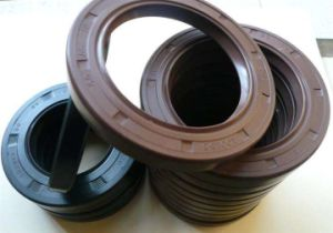 OEM/NBR/FKM/Vmq/PTFE/Silicone Rubber Oil Seal pictures & photos