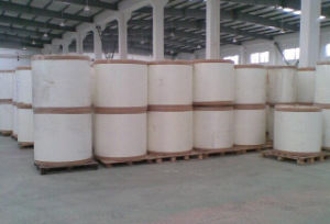 Non Woven Geotextile PP with Ce Certificate pictures & photos