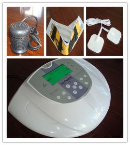 Massage Detox SPA (B01)