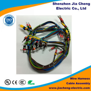 OEM ODM RoHS Compliant Professional Lvds Display Panel Wire Cable Harness pictures & photos