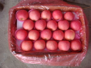 Sweet Red Fresh Huaniu Apple Supplier pictures & photos
