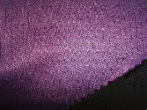 Drop Needle Jersey Bonded Polar Fleece Fabric pictures & photos