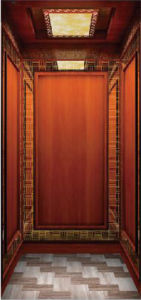 Braun Elevator 320-400kg Home, Villa Elevator/Lift pictures & photos