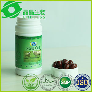 Dietary Supplements Pure Extract Lamb Placenta Soft Capsule pictures & photos