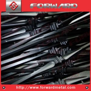 Hot Iron pictures & photos