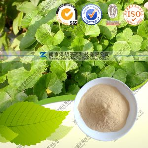 100% Natural High Quality Gotu Kola Extract Asiaticoside pictures & photos