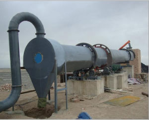 Lygd-1200*10000 Continuous Cow Muck Dryer From China pictures & photos
