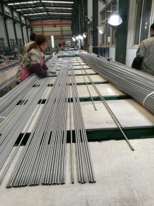 Stainless Steel Seamless Pipe for Building pictures & photos