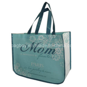 Non Woven Bag with Lamination (NSBG09-035)