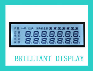 Custom Design Segment LCD Modules with RoHS Certifivates
