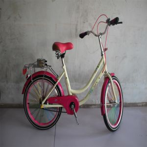 City Bike/Bicycle for Women/Steel Frame Bike pictures & photos