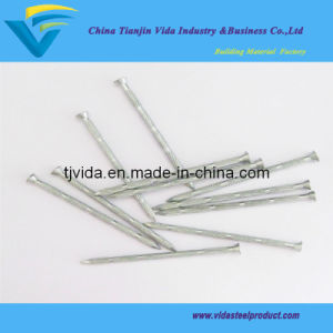 Concrete Nail Bamboo Shank with Excellent Quality pictures & photos
