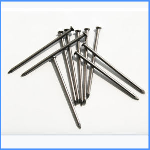 China Common Wire Nail Supply Made in China pictures & photos