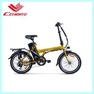 Student 250watt Brushless Motor Folding Electrice Bicycle (CB-20F09) pictures & photos