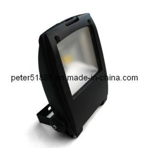 LED Flood Lamp (K-FL-50W-C)