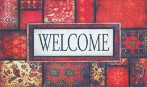 Modren Flocked Rubber Door Mat 8820 pictures & photos