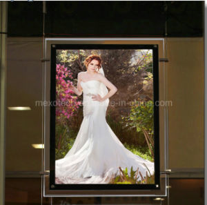 LED Photo Light Box Super Slim Light Box (CSH01-A4P-13) pictures & photos