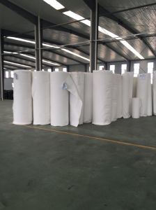 Needle Punched Filament Polyester Geotextile for Filter pictures & photos