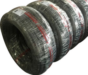 Chq Low Carbon Steel Wire SAE1008 for Making Rivets pictures & photos