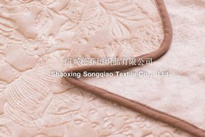 Embroidered Coral Fleece Blankets / Double Coral Fleece pictures & photos