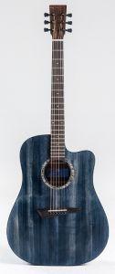 Diana-Player Acoustic Guitar