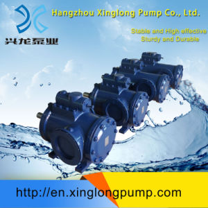 Xinglong Brand Three Screw Pump pictures & photos