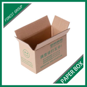 Large Size Solid Paper Carton Box for Shipping (FP3042) pictures & photos