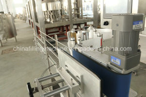 Automatic Vertical Adhesive Labeling Machine with Ce Certificate pictures & photos