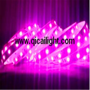 Ws2811 Digital Flexible LED Strip pictures & photos