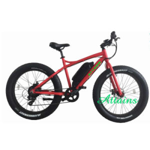 High Speen Fat Tire Snow Mountain Sand Beach E Bicycle pictures & photos