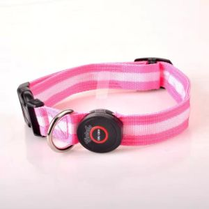 Seven Color LED Stripe Round Switch Fashion Simple Pet Collar pictures & photos