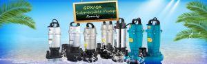 QDX QX Electric Submersible Pumps (1.5 Inch) Aluminum Housing pictures & photos