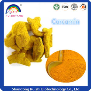 Curcuma Longa Extract Powder pictures & photos