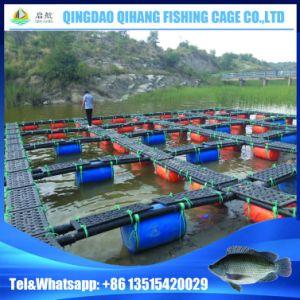 Lake or River Aquaculture Equipment for Tilapia Fish Farming pictures & photos