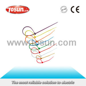 Non-Releasable Nylon Cable Tie pictures & photos
