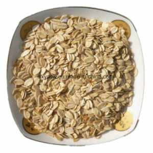 Natural Oat Extract 30% 70% Beta Glucan pictures & photos