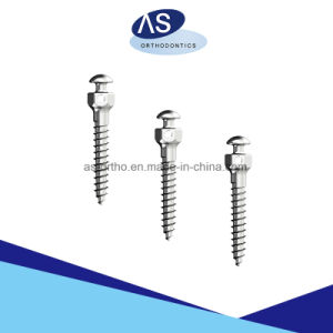 Orthodontic Anchorage Screws Mini Screws Dental Screws pictures & photos